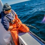 Slow Fish 201: Building Accountability in Seafood